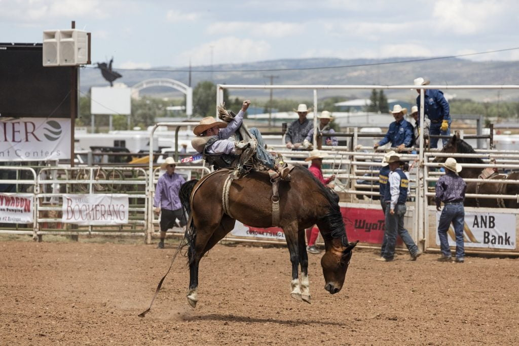 cowboys, bronc rider, rodeo