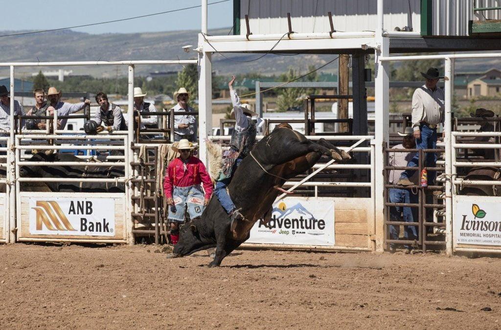 cowboys, bull rider, rodeo