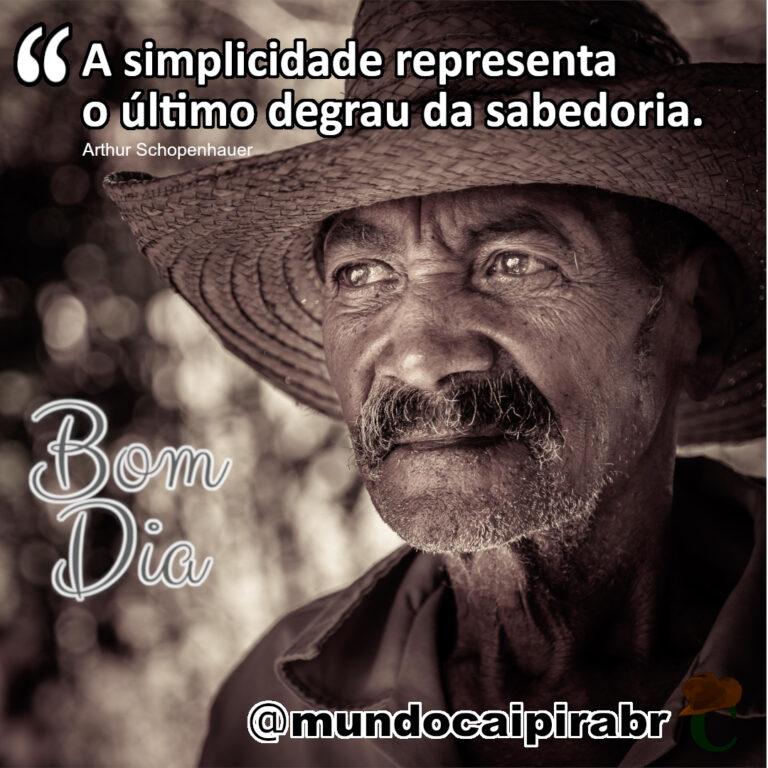 """A simplicidade representa o último degrau da sabedoria."" Arthur Schopenhauer"