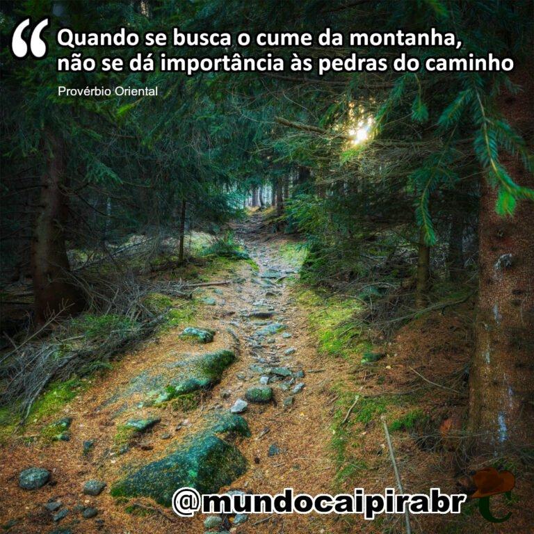 """""""Quando se busca o cume da montanha, não se dá importância às pedras do caminho"""" Provérbio Oriental"""