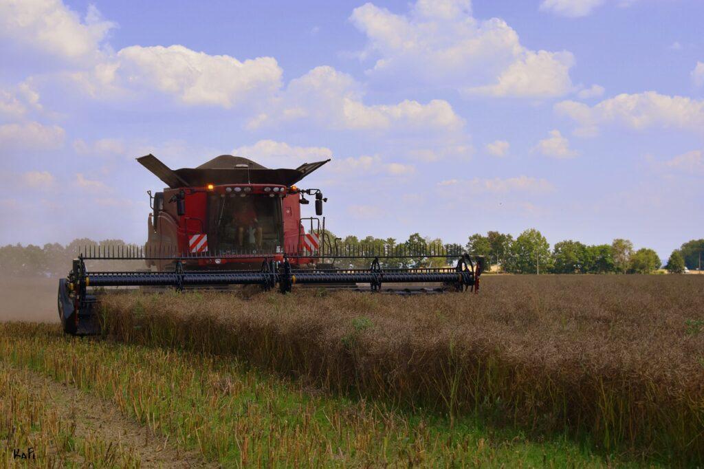 harvester, field, harvest